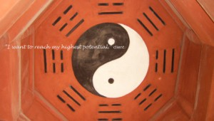 lin-homepic-yinyang